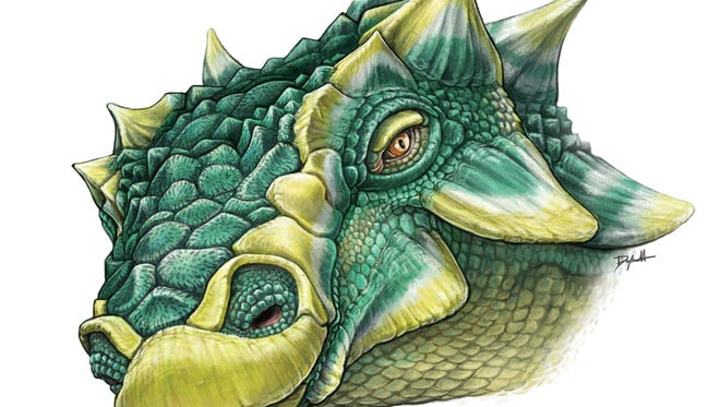 """Life drawing of Zuul crurivastator. Scientists have dug an exceptionally preserved spiky-tailed dinosaur. It's a new species, dubbed """"Zuul cruvirastator,"""" after the horned """"Ghostbusters"""" demon; """"crurvivastator"""" means """"destroyer of shins"""" for the animal's bony club of a tail."""