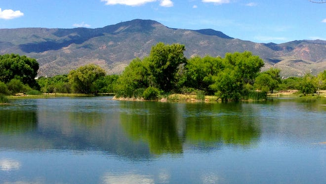 Mingus Mountain rises above the lagoons of Dead Horse Ranch State Park in Cottonwood.