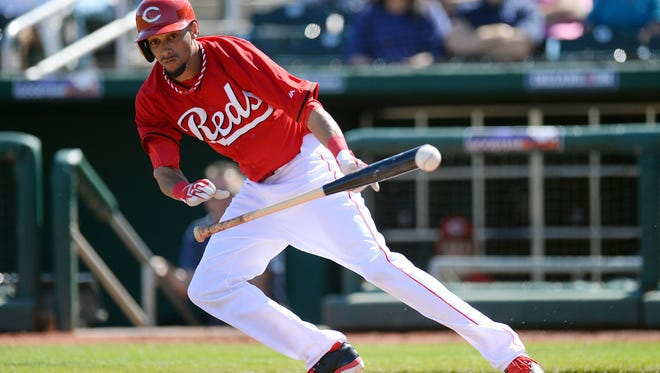 Reds outfielder Billy Hamilton has been working on his bunting this spring as a way to improve his on-base percentage.