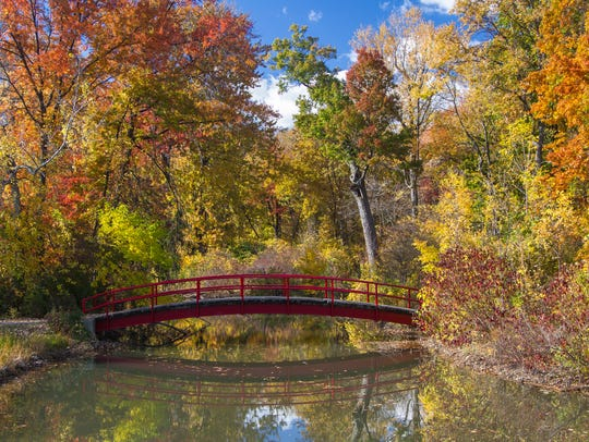 A cascade of autumn colors surround a foot bridge over