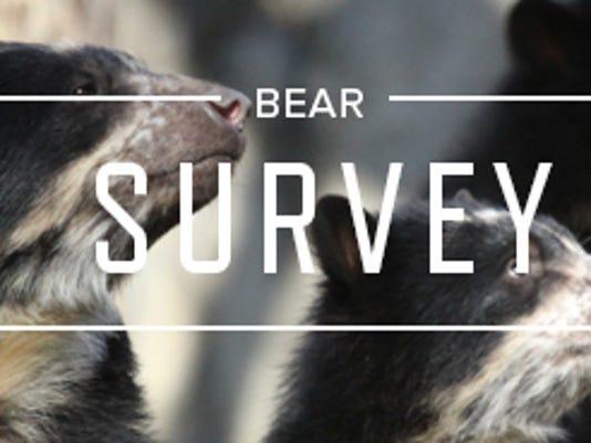 Andean bears survey