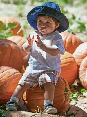 Jose Roberto Mireles III sits on a pumpkin so his parents can take his picture.
