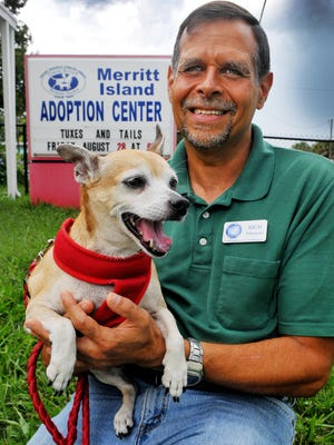 Rich Carpenter of Rockledge is an advanced dog handler and volunteer at the Brevard Humane Society Merritt Island Adoption Center. He spends time with Jo Jo, a Chihuahua Mix.