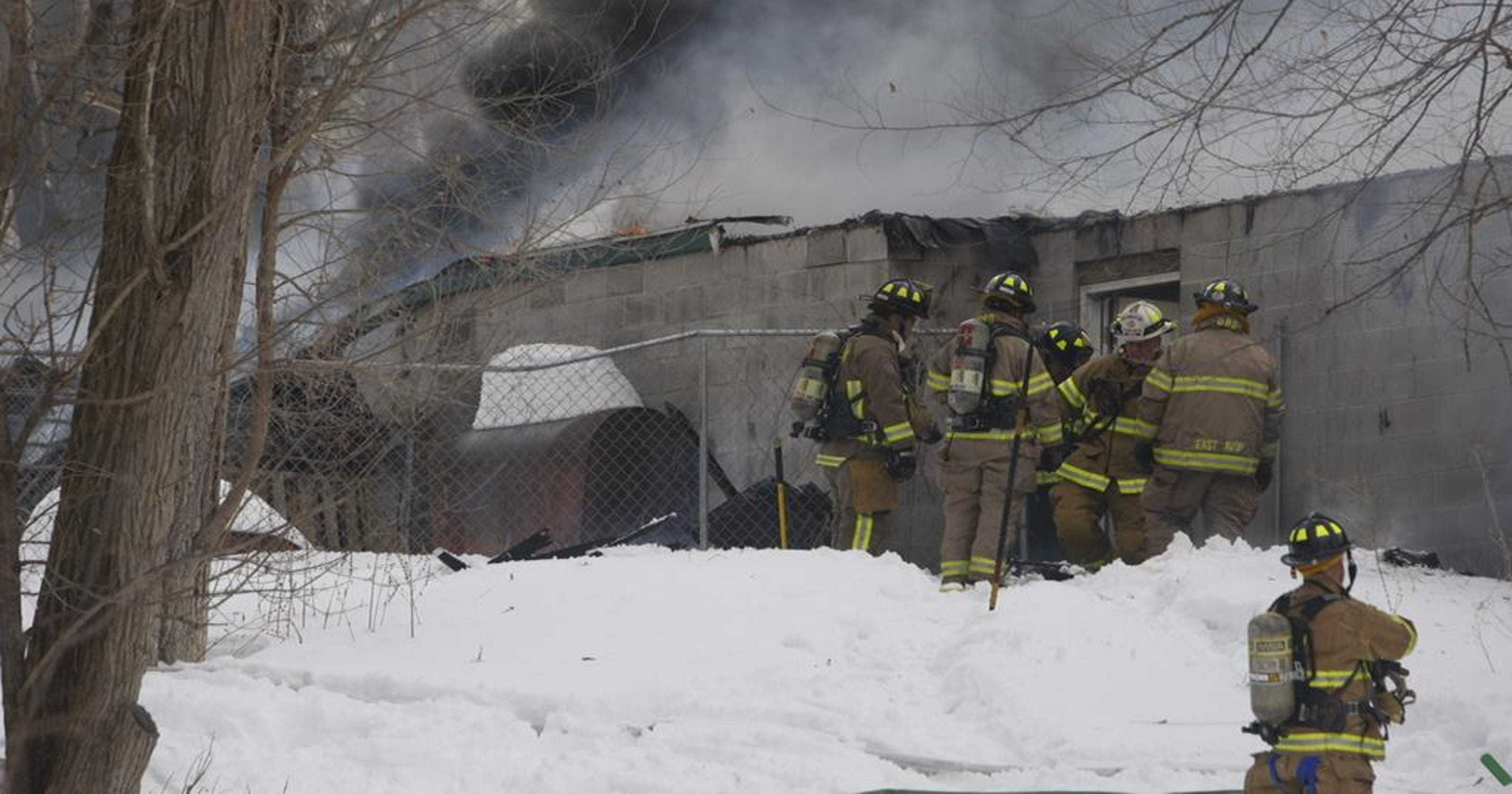 Several dogs perish in kennel fire