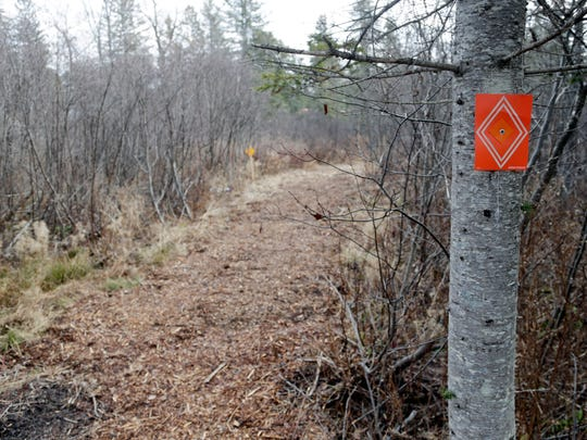 A snowmobile trail marker hangs on a tree along a trail on Tuesday, Dec. 8, 2015, in Speculator, N.Y. Some Northeasterners are beginning to wonder if a white Christmas may just be a dream, and business owners who rely on snow are starting to worry if warm weather could lead to a nightmare winter. (AP Photo/Mike Groll)