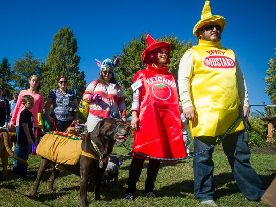 Dressed as a hot dog, Japhy the dog waits with his owners Melissa Flood, center, and Lee Flood, right, for their turn to be judged at the Howl-O-Ween Pooch Parade at UT Gardens in Knoxville on Oct. 23, 2016.