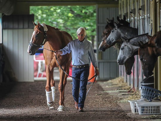 Trainer Bob Baffert walks Justify around the barn at Belmont Park on June 6.