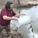 Opening day: Stocked trout boost angler chances