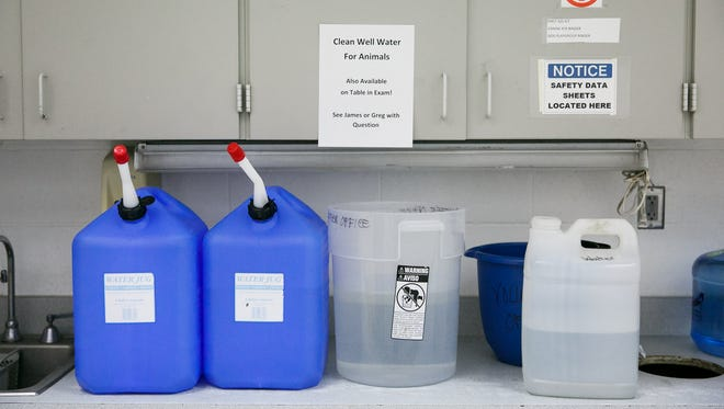 Containers full of clean well water in one of the exam areas at the Willamette Humane Society on Wednesday, May 30, 2018. The humane society is drawing water from an on-site well to water the more than 100 animals they have at the facility.