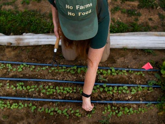 Athena Fleisher of Athena's Harvest weeds the garden