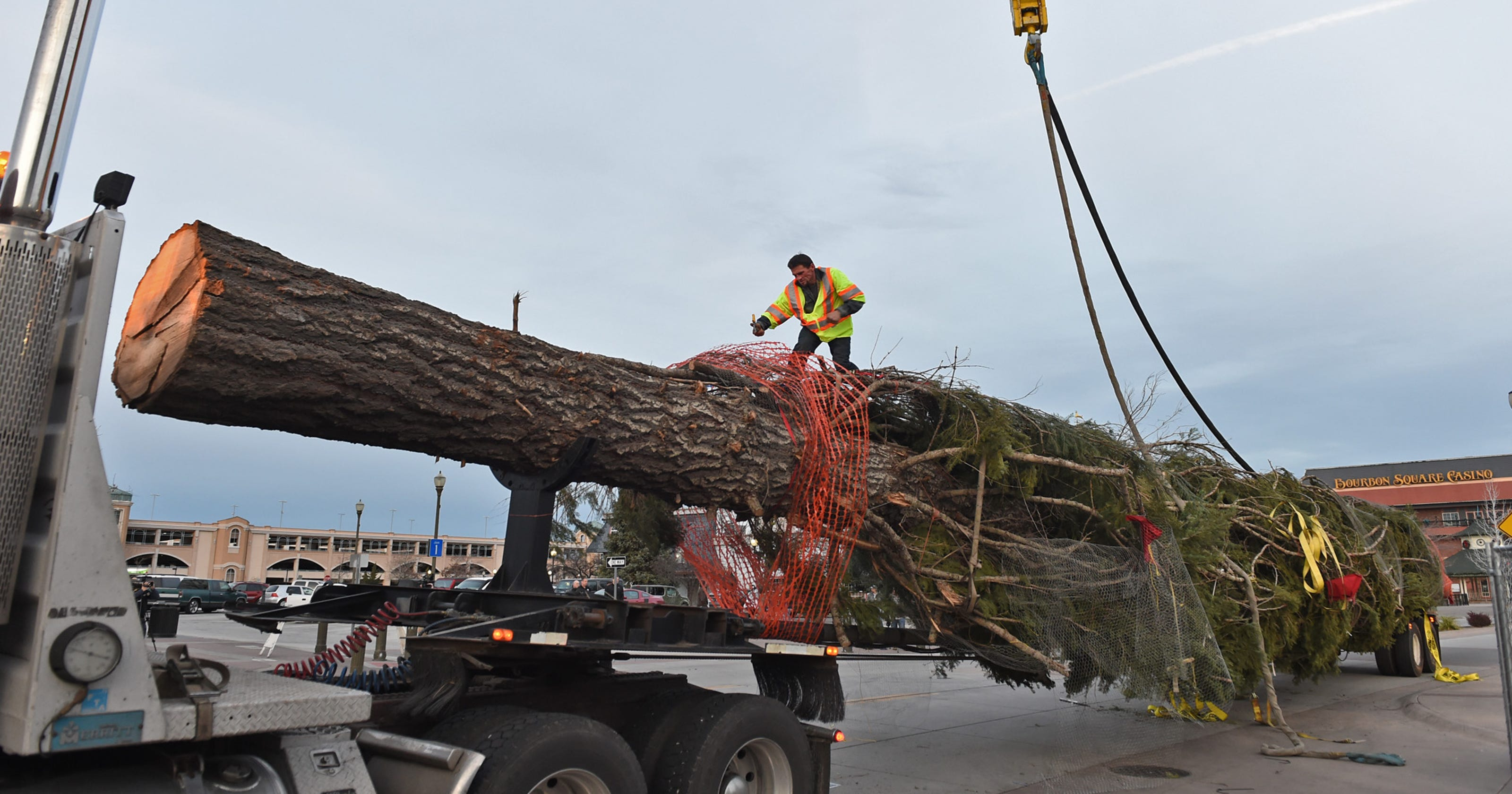 Reno Casino's Tallest Christmas Tree Cut Down By LA Outlet
