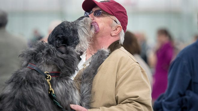 Earl Acker gets a standing lick from his Scottish Deerhound, named Simon, during The Celtic Classic dog show at the York Expo in York Sunday March 19, 2017. The 110 pound dog, is an international champion with 21 best in show awards.