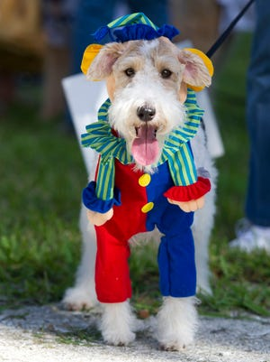 """Dogs For Life's 16th annual Howl-O-Ween dog costume """"pawrade"""" isset for 2-5 p.m. Oct. 21, 2017, with the """"pawrade"""" at 4 p.m. at the Dogs For Life Off-Leash Dog Park, 1230 16th Ave, Vero Beach."""