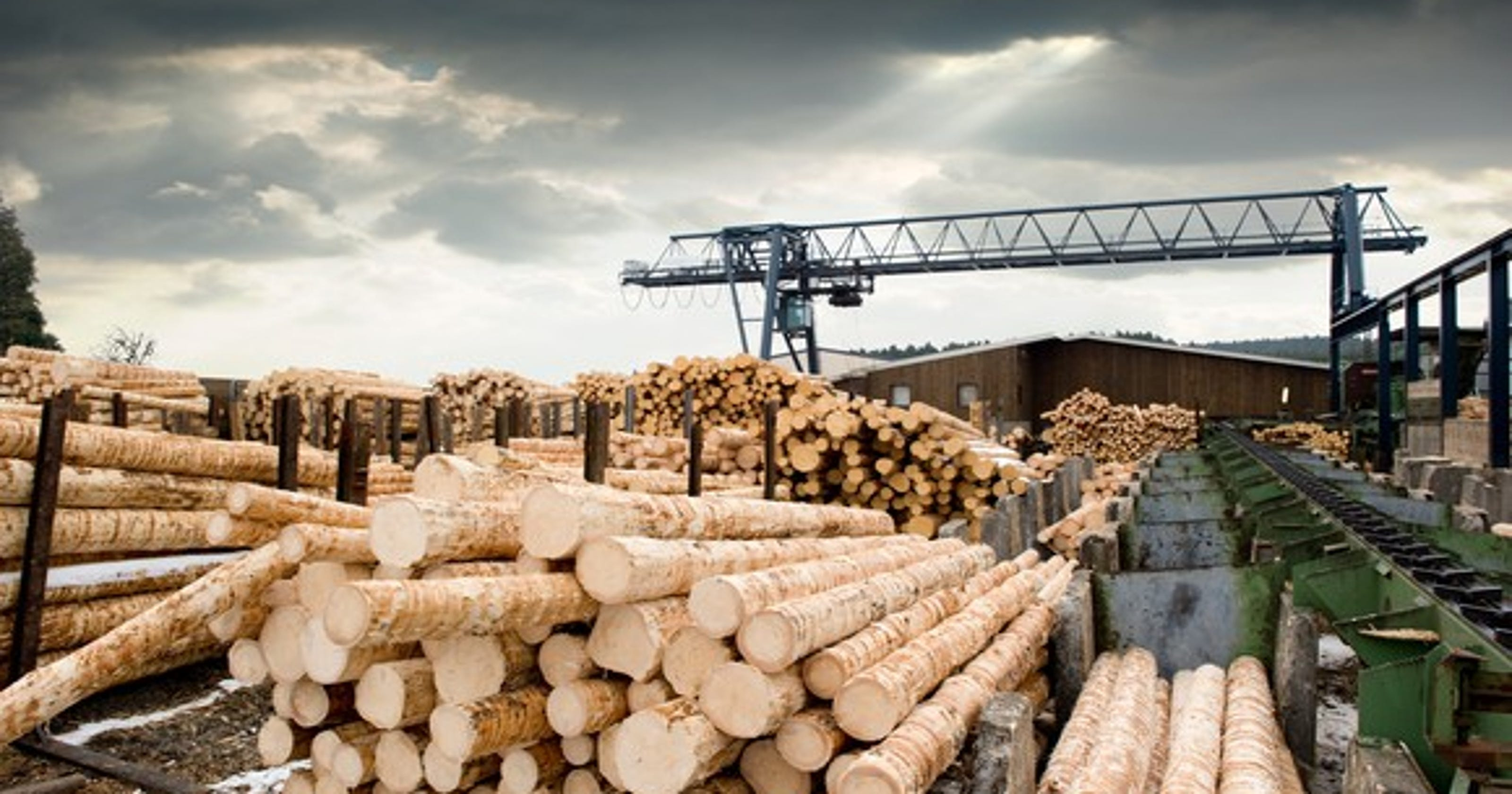 New lumber mill will employ 110 in Pike County