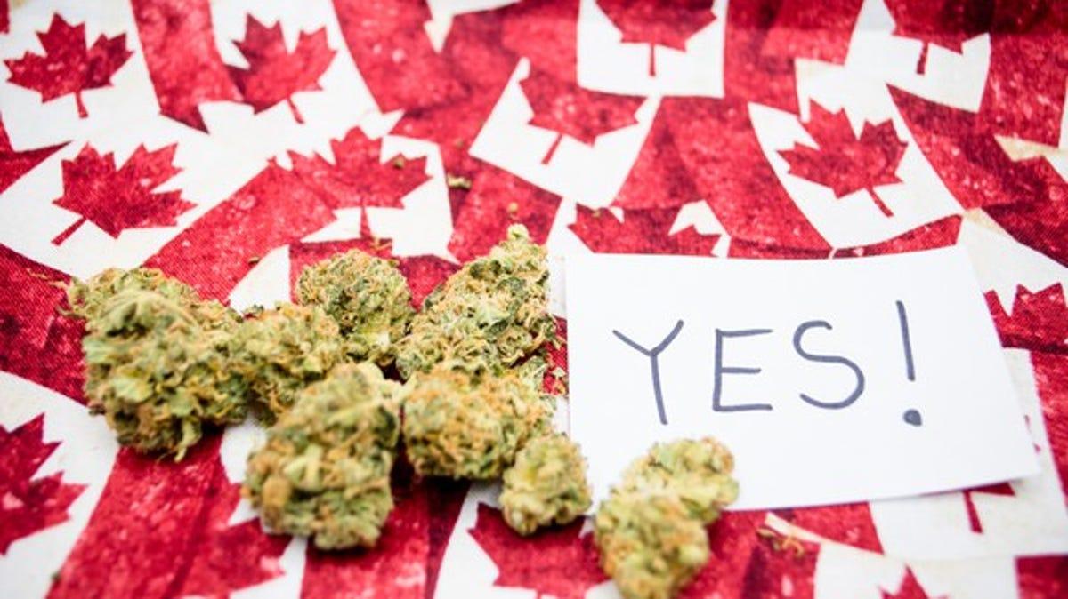Легализация марихуаны оон удобрения для конопли идеал