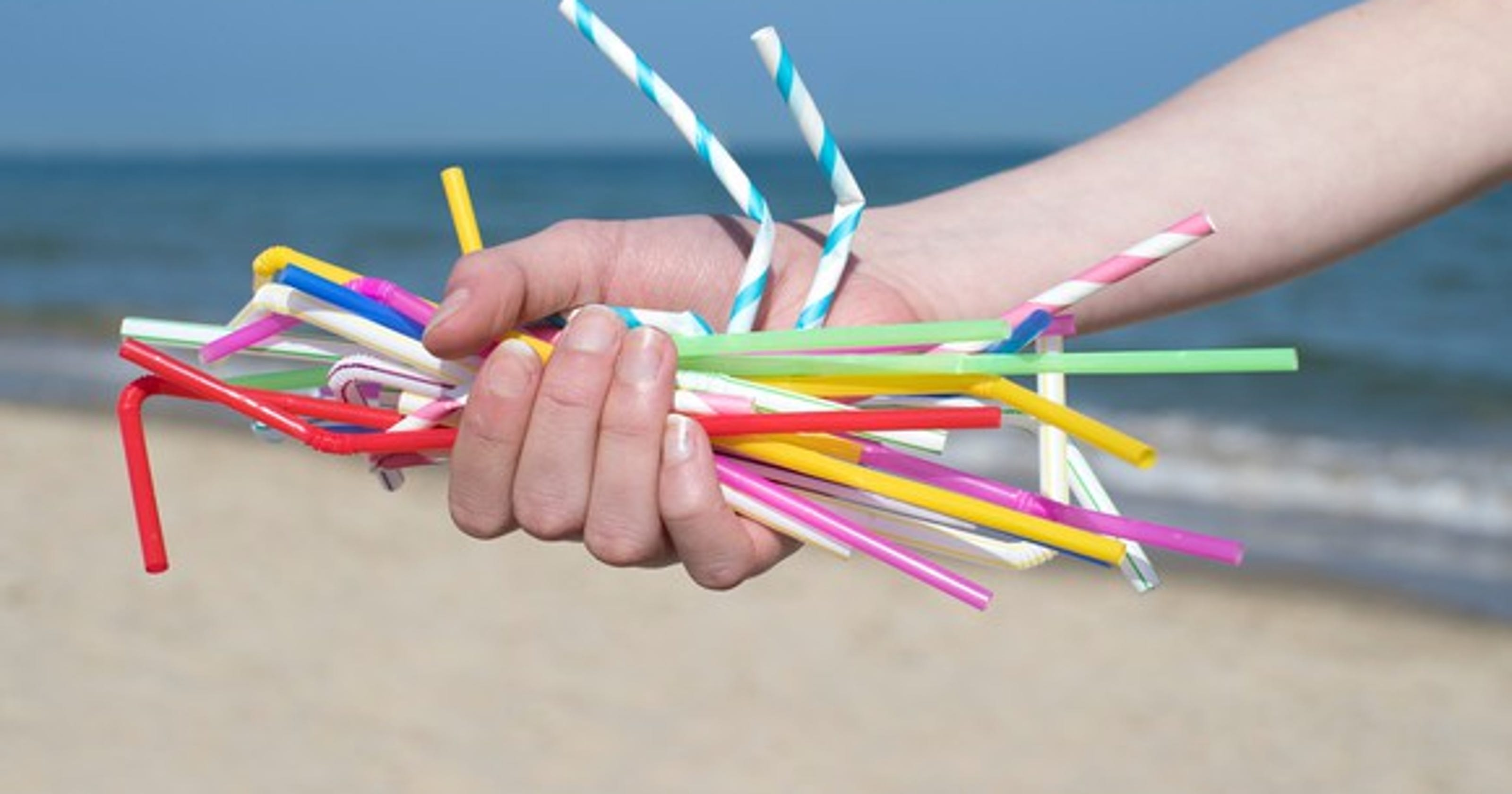 Bans On Plastic Straws Just Another Eco Fad That Will Soon Fade Wiring Nail Board