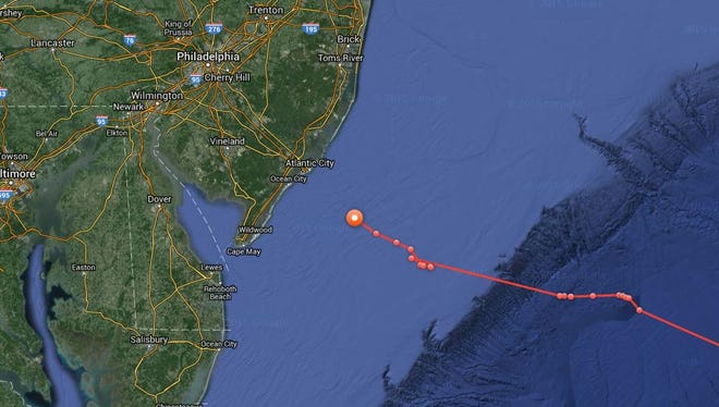 Mary Lee is heading back to the Jersey Shore, according to movements, which are tracked by OCEARCH.org.