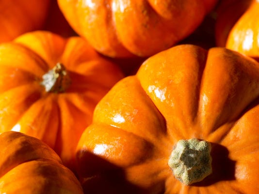 pumpkin_cover.jpg