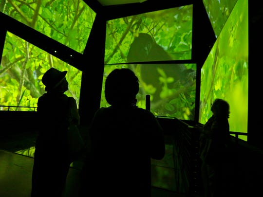 In this Friday, Sept. 26, 2014 photo, visitors watch an audio-visual installation titled, 'Panamarama'  at The Biomuseo, designed by world-renowned architect Frank Gehry in Panama City.