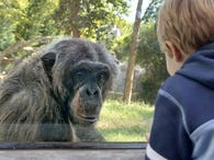 Save on tickets to parks and zoos