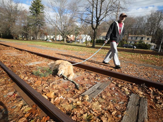 A walking trail runs along an abandoned set of railway tracks, parallel with Dean Dr. in Tenafly. The trail may be paved with asphalt like similar walking trails throughout the country including Ramsey.