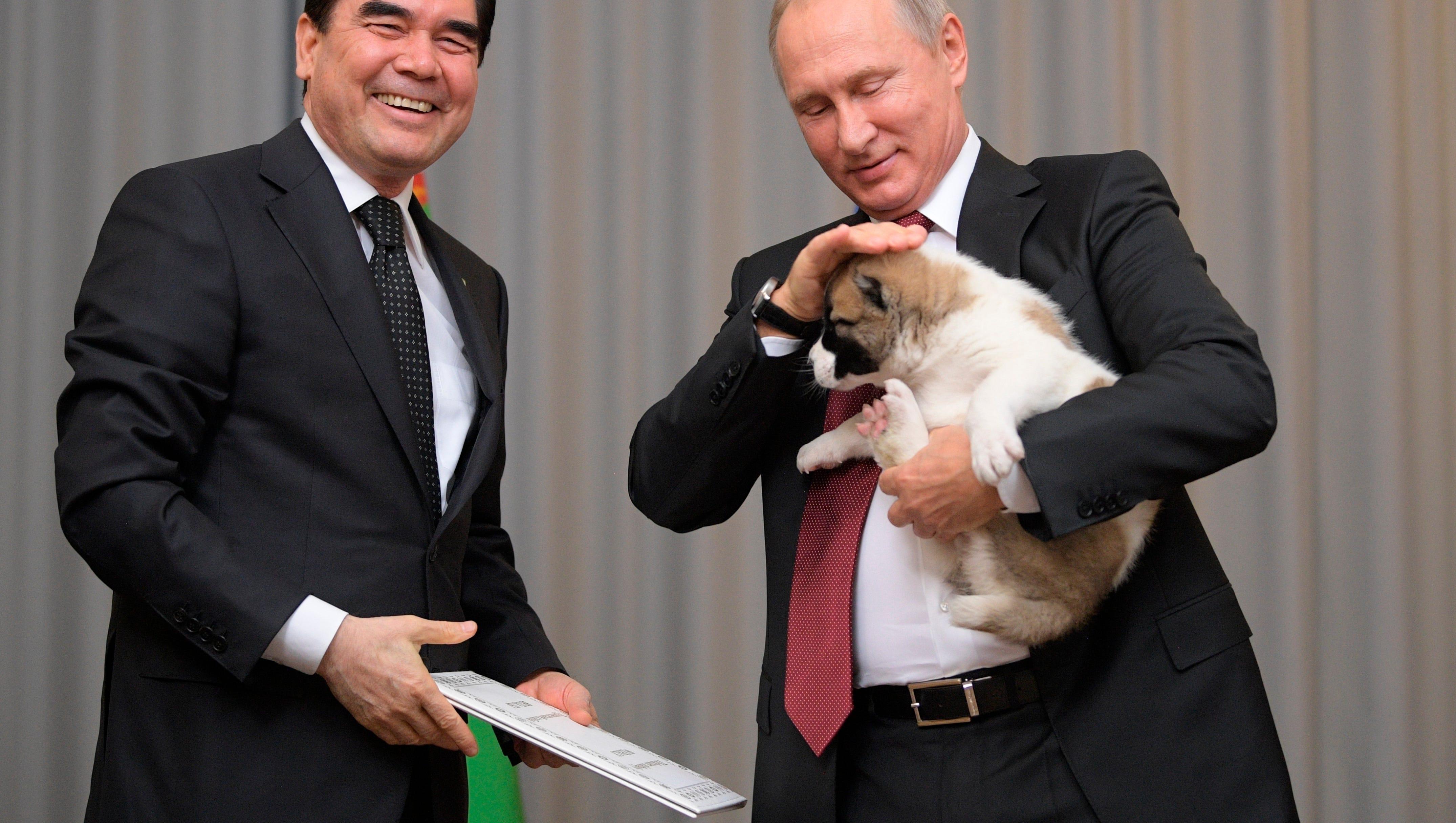 Vladimir Putin Cuddles New Puppy Named Verny