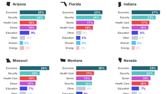 In states with key Senate races, the majority of voters identified the economy and security issues as most important.