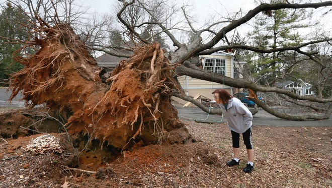 A woman in Berryville, Va., examines storm damage in 2017. Severe weather alerts are only as good as the technology underneath that supports them.