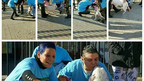 Rihanna is reunited with her owners Maria Gonzales (right) and Carmen Cruz (left) in the Bronx