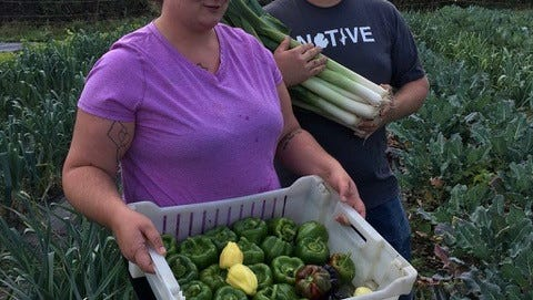 Travis and Miranda practice sustainable agriculture offering nutrient dense produce at the Farmington Farmers Market.