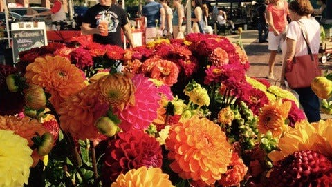 Opening day is Flower Day at the Farmington Farmers Market
