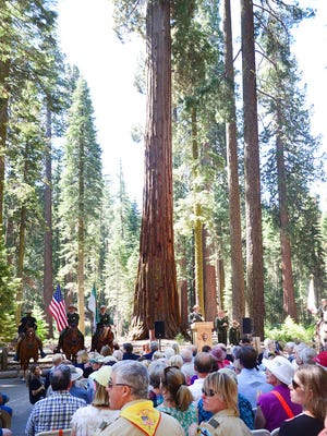 In this June 30, 2014 file photo, a giant sequoia in the Mariposa Grove serves as a backdrop for the Yosemite Grant sesquicentennial ceremony at Yosemite National Park, Calif.