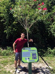 Nicholas Ranieri, Keep America Beautiful Youth Advisory Council member and coordinator of the Story Walk tree trail project, stands with one of the newly planted trees in Banner Lake.