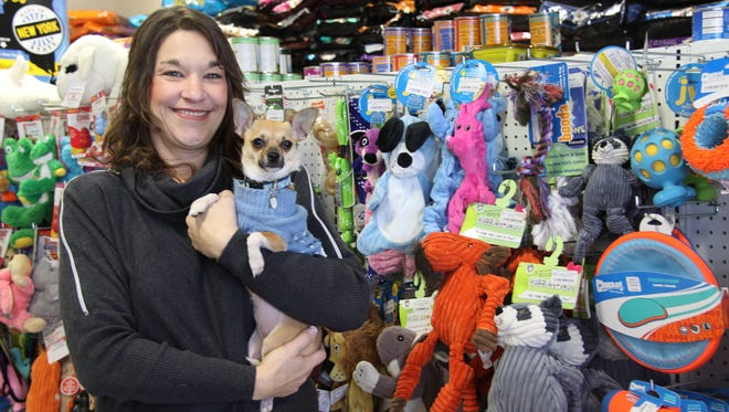 Paula Anderson, of North Chili, opened Healthy Choice Pet Supply and Grooming in Chili in October 2016.  She is shown here with her chihuahua, Boots.