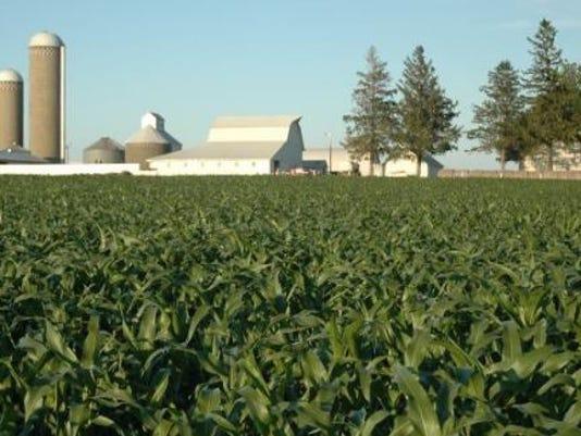farm-scene.JPG