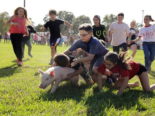 Children take down a pig down a pig during the greasy pig race at the 50th Annual Louisiana Swine Festival in Basile Nov. 5, 2016.