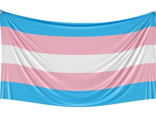 Transgender flag hanging on the wall, 3D rendering