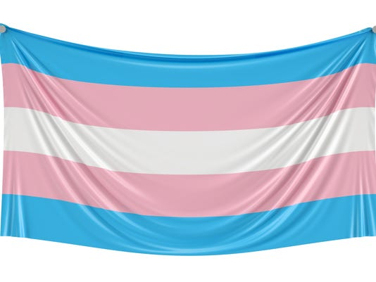 Transgender flag hanging on the wall, 3D rendering