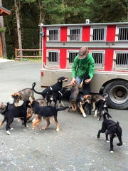 Shaynee and Jeremy Traska bred and raised two litters of pups in the summer of 2015. In all, 16 pups had to be taught to pull a sled and ride in the dog truck.