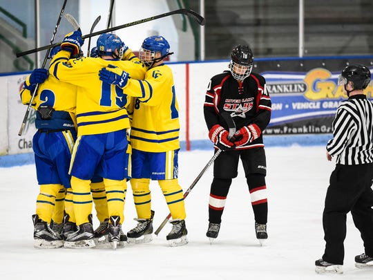 St. Cloud Cathedral players celebrate a goal against River Lakes during the second period Wednesday, Dec. 28, in the Granite City Hockey Showcase at the Municipal Athletic Complex.