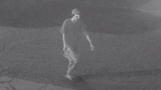 Prattville police are looking for this person in connection with an auto theft.