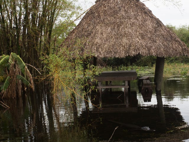 People of the Everglades survive, thrive in wake of