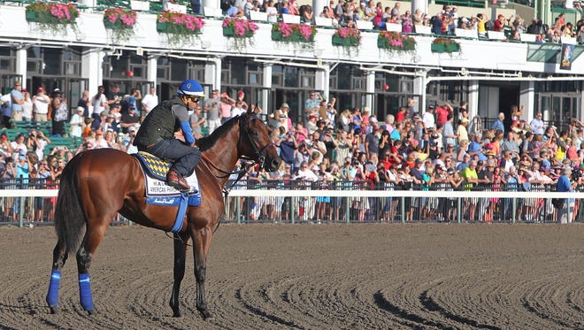 Triple Crown Champion American Pharoah pauses before his morning gallop in front of a large crowd of fans who came out to see him at Monmouth Park in Oceanport, New Jersey on Friday morning July 31, 2015.  American Pharoah is the 1-5 favorite for Sunday's (8/2) $1,750,000 Haskell Invitational. Photo By Ryan Denver/EQUI-PHOTO