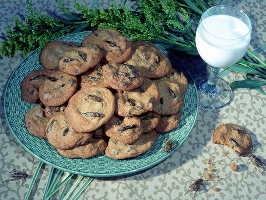 Chocolate Chirp Cookies