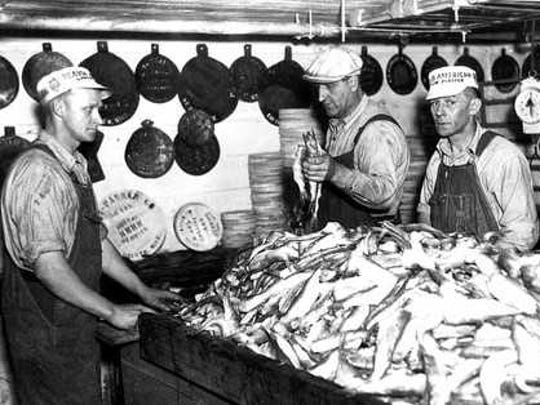 A commercial catch of lake herring is readied for processing.