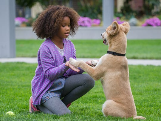 """This image released by Columbis Pictures shows Quvenzhane Wallis in a scene from """"Annie."""" (AP Photo/Columbia Pictures - Sony, Barry Wetcher)"""