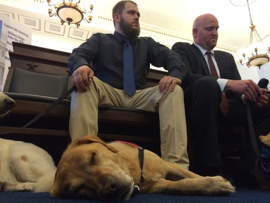 Veterans urge military to bring dogs home to retire