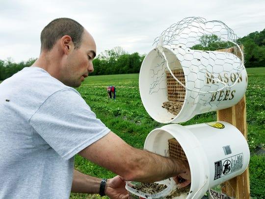 Jay Williams, a Williamson County bee farmer, has partnered