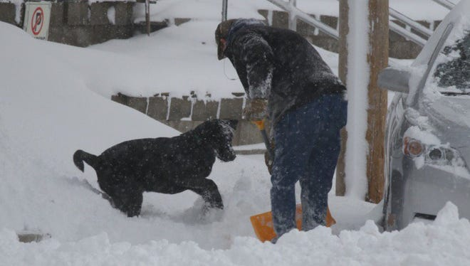 Zeke the dog waits to see what his owner Tom Le Roy will do with the snow after he adjusts his earphones.