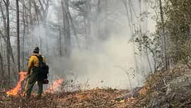 Arson suspected in two WNC wildfires